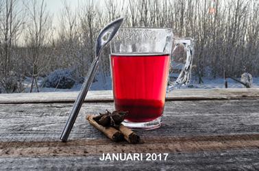 januari-2017 zin in thee
